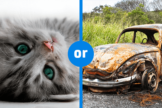 Would you rather - motoring 07